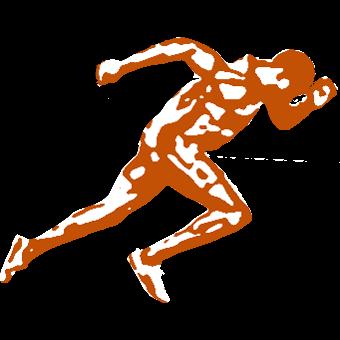 Logotyp för Steady Go - Marknadskommunikation från start till mål